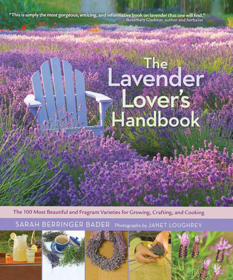 The Lavender Lover's Handbook By Bader, Sarah Berringer/ Loughrey, Janet (PHT)